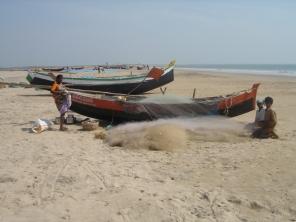 India 2005 137
